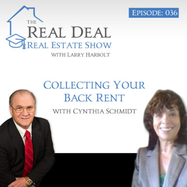 Collecting Your Back Rent with Cynthia Schmidt. #36